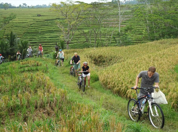 cycling in bali 2
